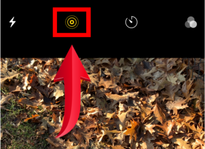 How to STOP Taking Live Photos